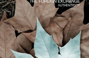 foreign-exchange-authenticity